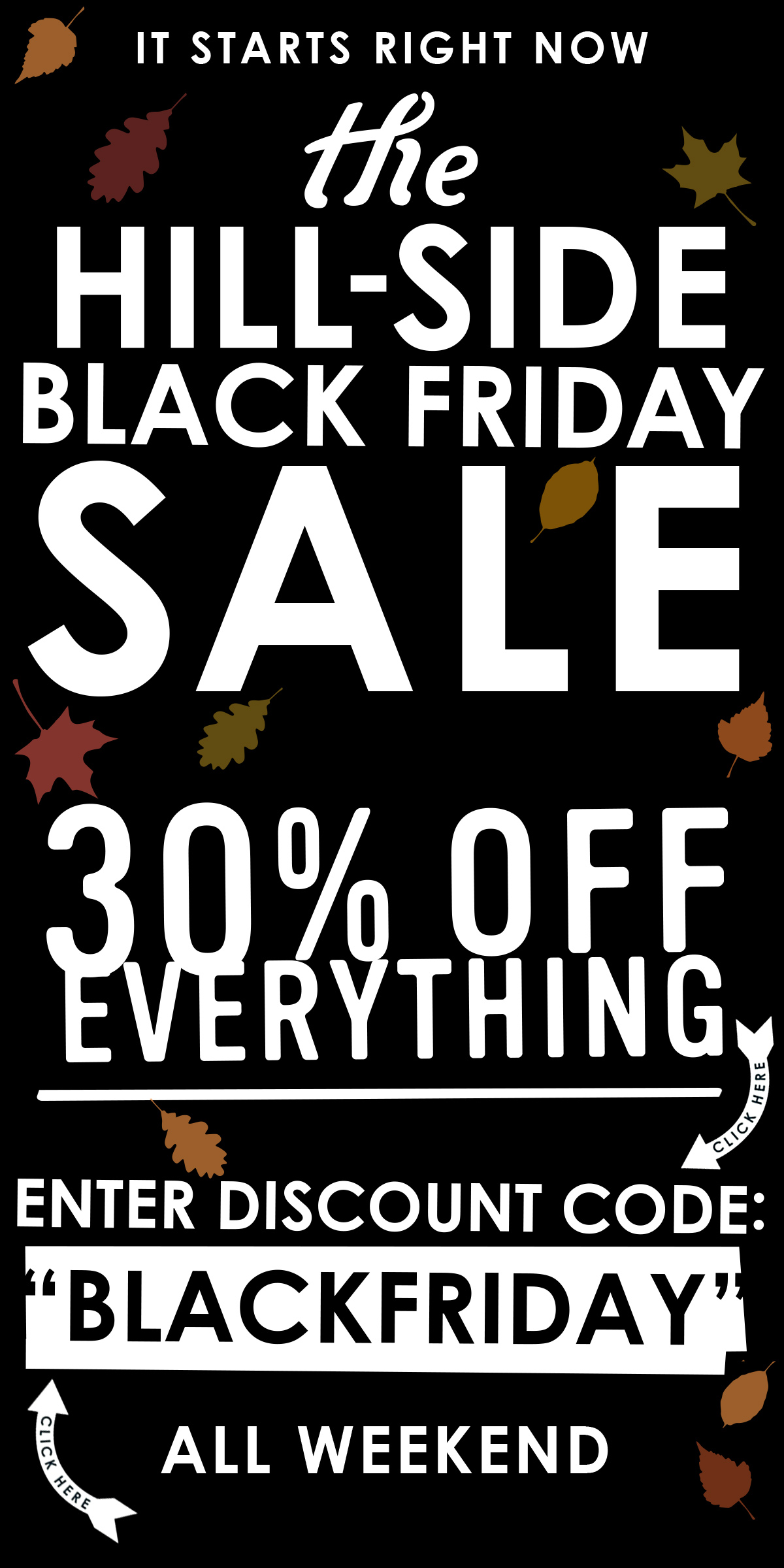 "... 30% Off Everything - Use Discount Code ""BLACKFRIDAY"""